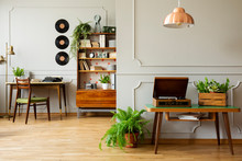 Chandelier Above Vintage Gramophone And Box With Green Plants In Vintage Home Office Interior
