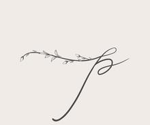 Vector Hand Drawn Floral P Mon...