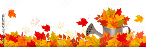 Fototapeta Autumn nature panorama with colorful leaves and watering can