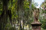 Fototapeta Sawanna - Bonaventure Cemetery is a public cemetery located on a scenic bluff of the Wilmington River, east of Savannah, Georgia.