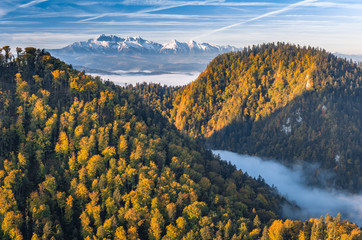 FototapetaBeautiful morning panorama of Dunajec river gorge and Tatra mountains, colorful autumn
