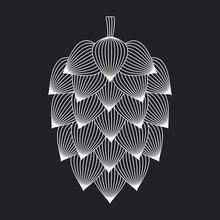 Beer Hop Design. Hops Ornate On Black Background