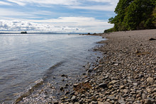 The Coastline And The Rocky Beach Of Sears Island On Penobscot Bay In Maine In The Summertime.