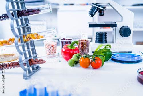 Chemical Laboratory of the Food supply . Food in laboratory, dna modify .GMO Genetically modified food in lab . - 229267537