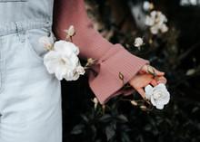 Hand Holding White Flower