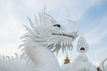 The Beautiful Chinese Dragon S...