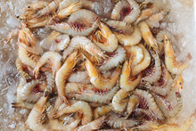 Shrimps On The Market From Above