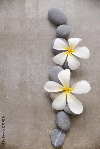Keuken foto achterwand Frangipani White orchid and stones close up.
