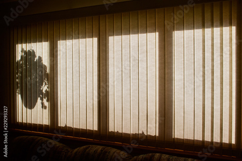 View of flower basket shadow silhouette in window with vertical blinds