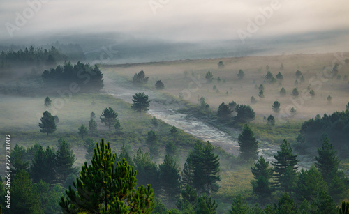 Tablou Canvas Misty sunrise in the country with firebreak