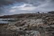 Grönland - Wildnis