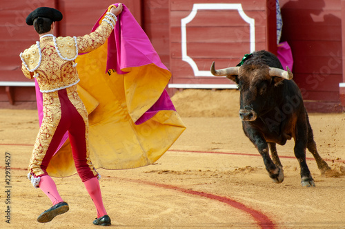 BULLFIGHT IN SEVILLA, SPAIN..