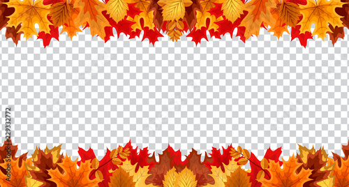 Vászonkép Autumn leaves  border frame with space text on transparent background