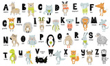 Fototapeta Fototapety na ścianę do pokoju dziecięcego - Vector poster with letters of the alphabet with cartoon animals for kids in scandinavian style