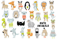 Vector Poster With Cartoon Cute Animals For Kids In Scandinavian Style. Hand Drawn Graphic Zoo