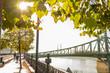 autumn view of Liberty bridge