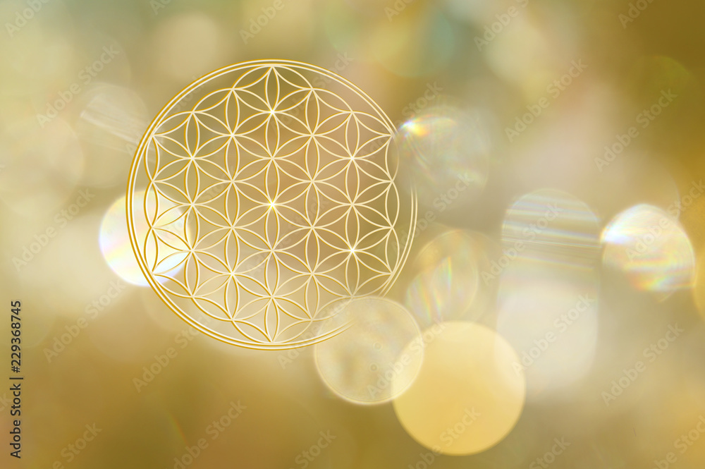 Fototapety, obrazy: Blume des Lebens in goldenem Licht