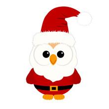 Christmas Owl. Christmas Card....