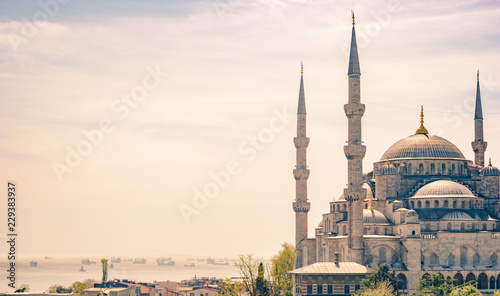 Minarets and domes of Blue Mosque with Bosporus and Marmara sea in background, Istanbul, Turkey Wallpaper Mural