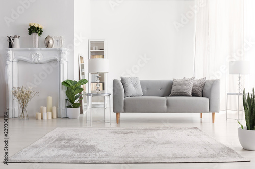 Photo Plants and carpet in white living room interior with candles next to grey couch