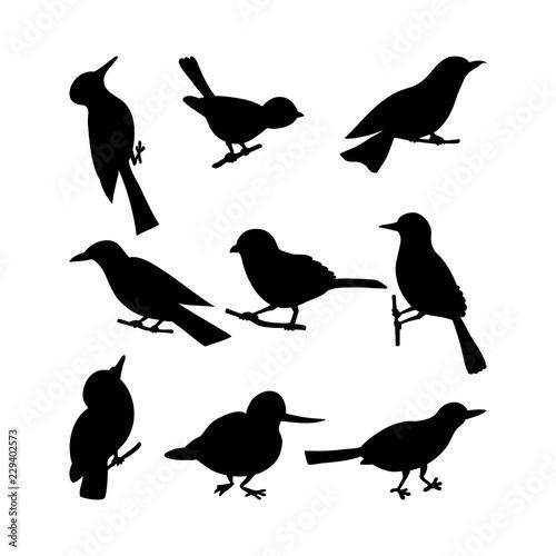Fotomural Black birds Silhouettes