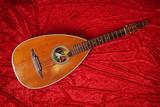 vintage lute string instrument on red velvet background