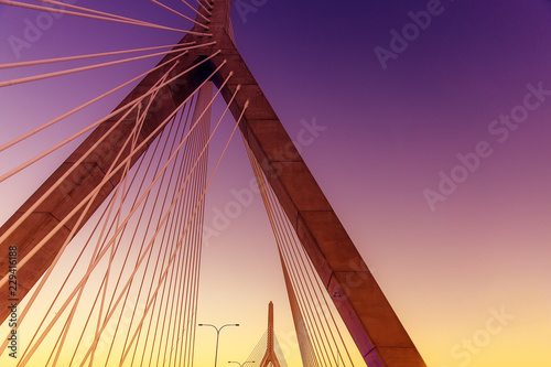 cable bridge Canvas Print