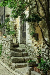 Fototapeta Uliczki Narrow cobbled street with flowers in the old village Tourrettes-sur-Loup at night, France.