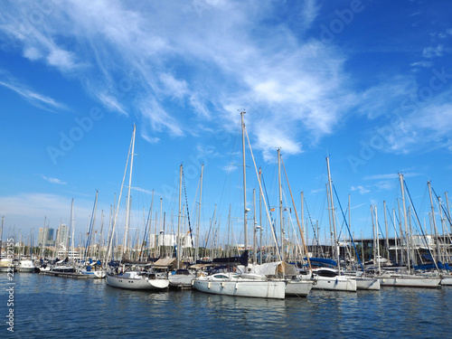 Tuinposter Poort Port Vell in Barcelona, old harbor of Barcelona with an area of sports boats, yachts and a shopping area in Catalonia, Spain