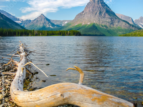 In de dag Natuur Park Two Medicine Lake and Mount Sinopah on background, Glacier National Park, Montana, United States.