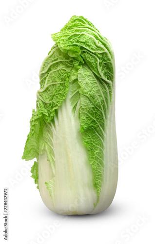 Peking cabbage on a white background. Fresh Peking cabbage close up isolated on white background.