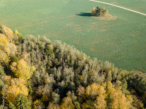 Fotobehang Olijf drone image. aerial view of rural area with fields and forests in autum