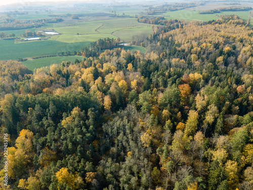 Staande foto Olijf drone image. aerial view of rural area in autumn with yellow and red colored trees from above