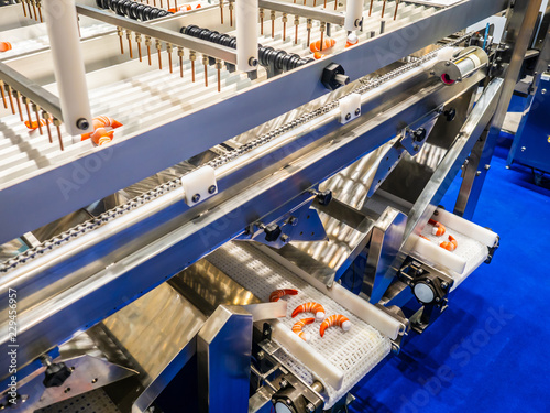 Food industry. Conveyor for processing sea products. Shrimp processing. Conveyor with shrimp. Manufacturing of semi-finished products.