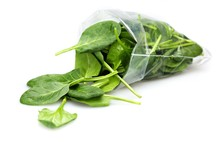 Young Spinach Leaves Falling Out Of Plastic Bag