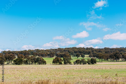Foto op Aluminium Blauw landscape with green field and blue sky