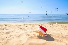 Starfish Wearing Red And White Furry Santa Hat On The Beach With Seagulls And Blue Water