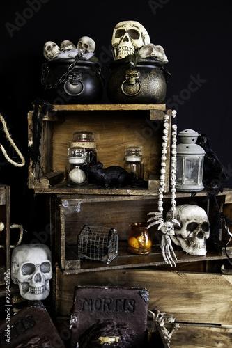 Papiers peints Retro Scary halloween skulls