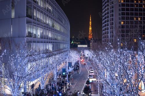 Spoed Foto op Canvas Tokyo Illuminated Roppongi Keyakizaka Street and Tokyo Tower 六本木けやき坂イルミネーションと東京タワー