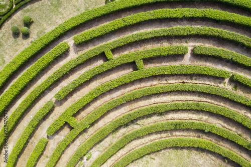 Obraz na płótnie Aerial view of Green maze garden