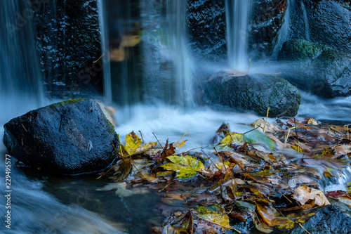 Spoed Foto op Canvas Bos rivier small waterfall rushing down to the rock with piles of fall leaves at the bottom