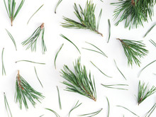 Pattern Of Pine Needles, Flat ...