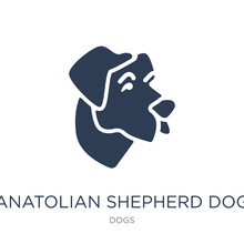 Anatolian Shepherd Dog Dog Icon. Trendy Flat Vector Anatolian Shepherd Dog Dog Icon On White Background From Dogs Collection