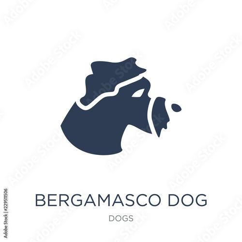Bergamasco dog icon Canvas Print
