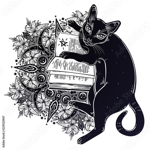 Smart black cat reading the magic book. Wall mural