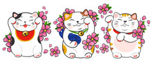 Three Various Maneki Neko And Sakura Flowers. Hand Drawn Colored Vector Set. All Elements Are Isolated