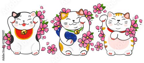 Photographie  Three various maneki neko and sakura flowers