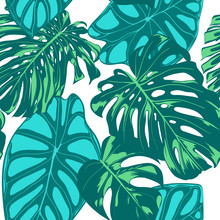 Seamless Vector Tropical Pattern. Monstera Palm Leaves And Alocasia. Jungle Foliage With Watercolor Effect. Exotic Hawaiian Textile Design. Seamless Tropical Background For Fabric, Dress, Paper, Print