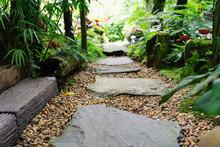 Stone Walkway In Garden Step S...