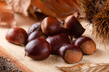 Chestnuts On Wooden Board And Autumn Leaves